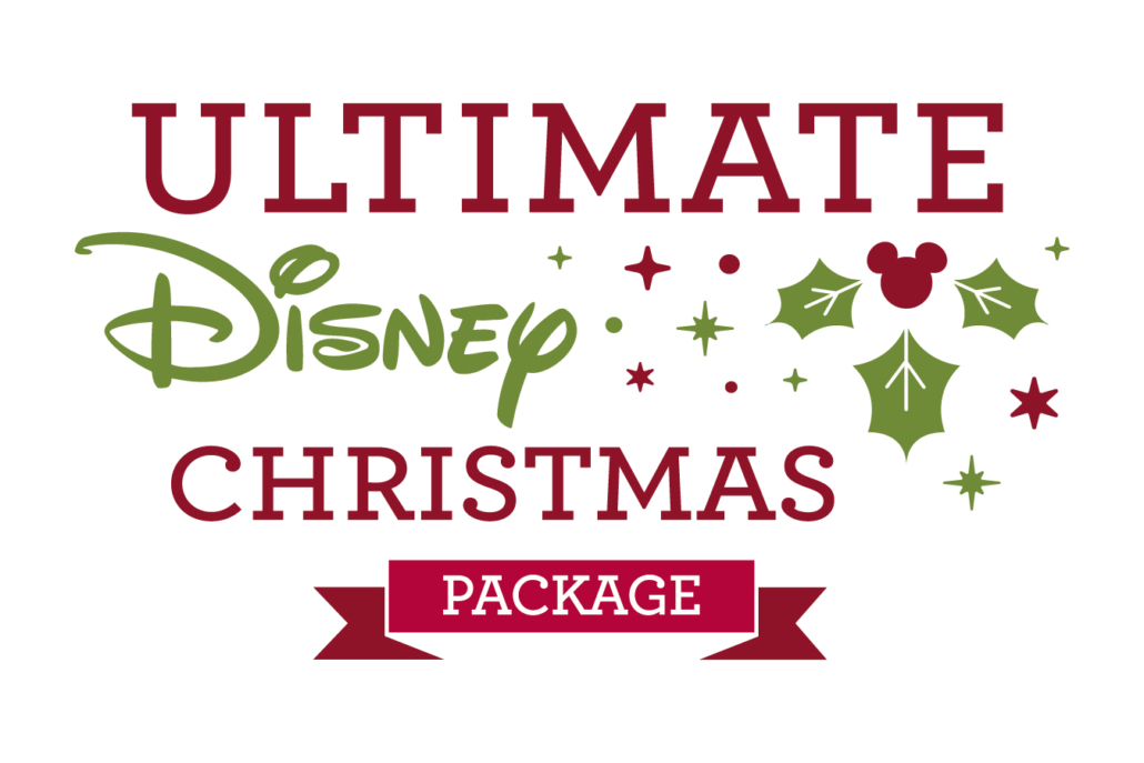 Disney Christmas Package
