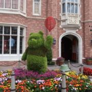 Flower and Garden Festival 2020