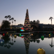 Hollywood Studios at Christmas